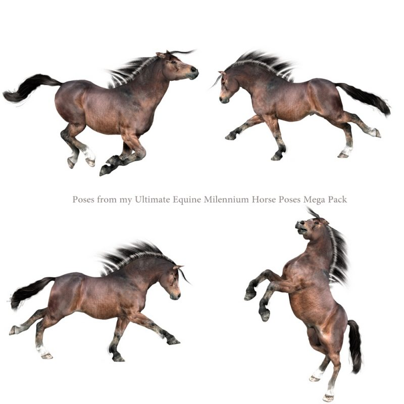 Millennium Horse Native Pony texture and full body morph FBM character for Poser and Daz Studio Poser Horse character
