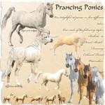 New Paint Shop Pro Pony Tubes