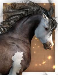 daz_paint-horse-thumbnail