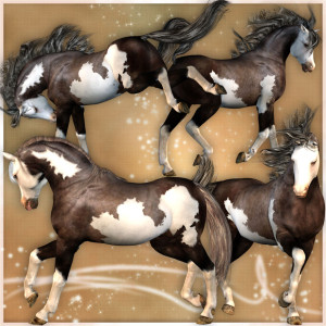 Paint Texture for the Millennium Horse 3d Figure from Daz3d