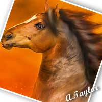 Red Gold, a new piece of digital equine art image finished.