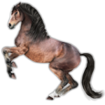 Native Pony Character on Sale Now