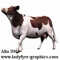 A photo based brown and white texture for the Daz3d cow