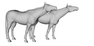Daz Horse 2 compared with the Millennium Horse
