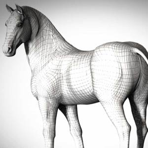 New Horse model at Daz3d