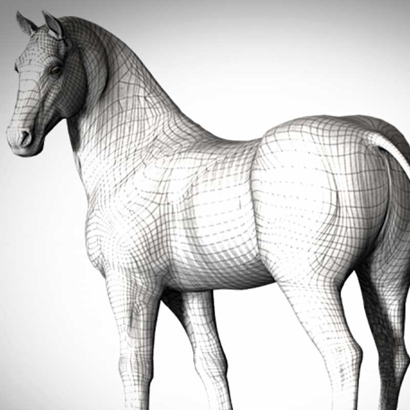 New Horse model at Daz3d