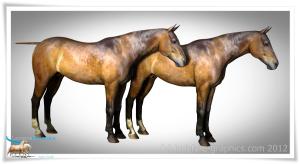 Daz Horse 2 MilHorse UVs