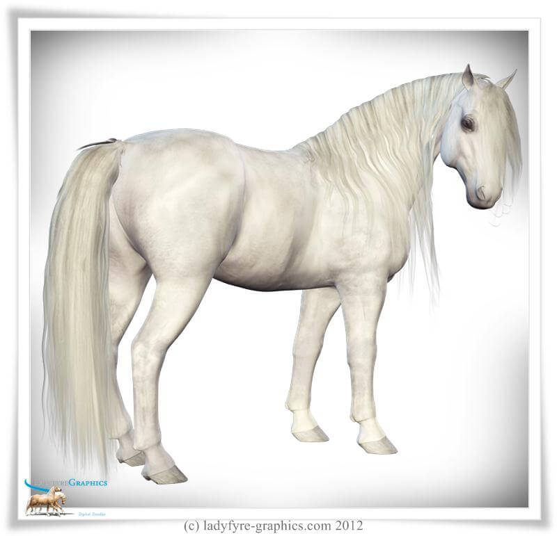 Mane for Daz Horse 2 Now Free Download