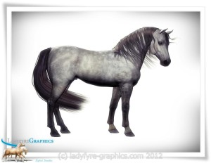 Arab Blood Morph for Daz Horse 2