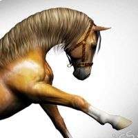 free mane for Daz Horse 2 (DH2) 3d horse model