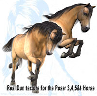 Realistic dun free texture for the poser horse