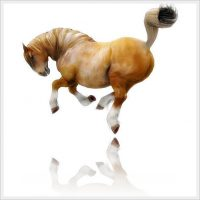 Ultimate Charger Poses and Animation for Daz 3d Charger Horse