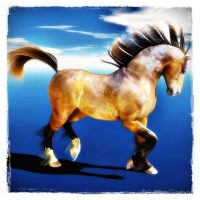 Carrara 8.0 & Dynamic Hair Mil Horse