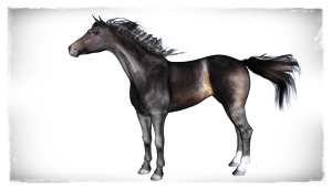 Daz Horse 2 |Karina | Thoroughbred Mare