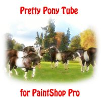 Cute Pony Tube for Paintshop Pro