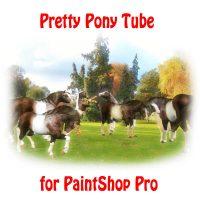 Cute Pony Tube for Paintshop Pro
