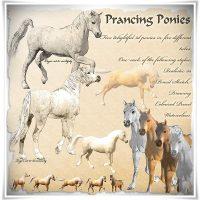prancing-ponies-psp-tube_010