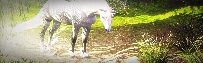 The last Unicorn 3d Render