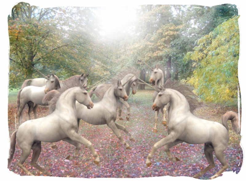 Paint Shop Pro 3d Unicorn Tubes