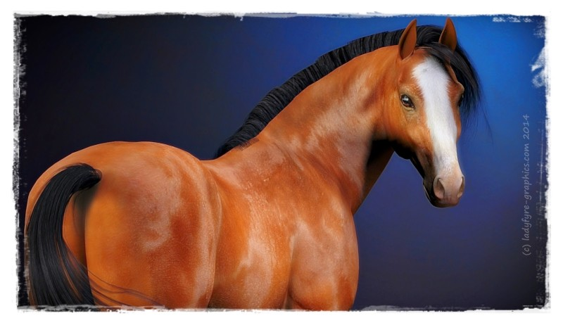 New Texture for Hivewire 3d Horse Harry