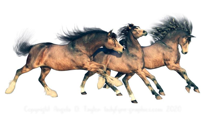 3 Generation of 3d Horses Daz Studio