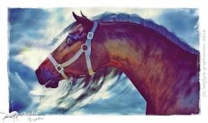 Hivewire Horse aka Harry rendered in Daz Studio iray