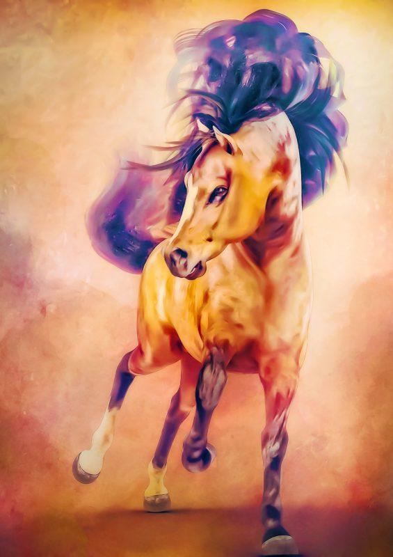 Hivewire Horse Welsh Cob