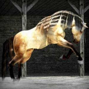Daz Millennium Horse rendered in Carrara | 3d Horse Gallery | Poser, Carrara, Daz Studio