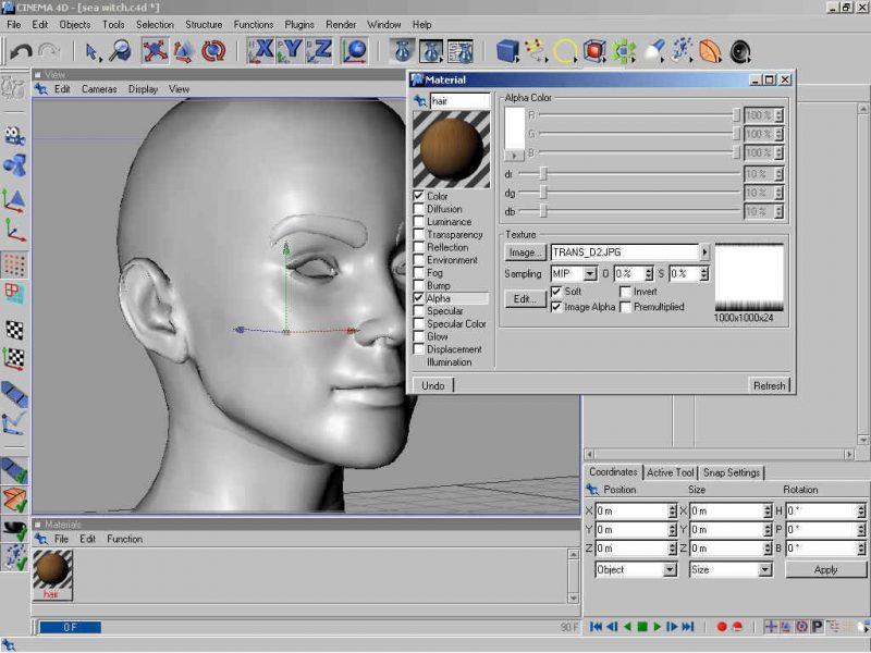 Poser 3d Hair Modeling Tutorial Using Cinema 4d - step 1