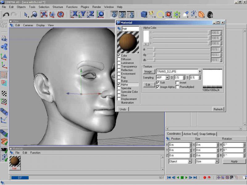 Poser 3d Hair Modeling Tutorial Using Cinema 4d - step 1