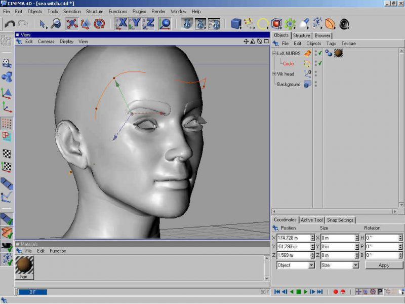 Poser 3d Hair Modeling Tutorial Using Cinema 4d - step 2