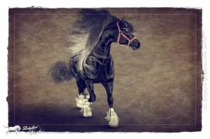 ladyfyre-graphics-3d-horses3-11-0000001111500-smart-copy-204-daz-studio-iray