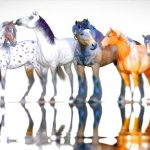 The 3d digital horse models for Poser and Daz Studio