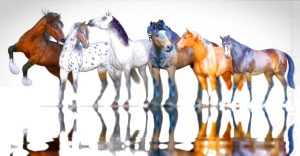 The 3d digital horse models for Poser and Daz Studio